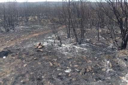 Više od nedjelju dana se danonoćno bore sa vatrom: Vatrogasci ODBIJAJU POŽAR OD KUĆA u selu Mirilovići