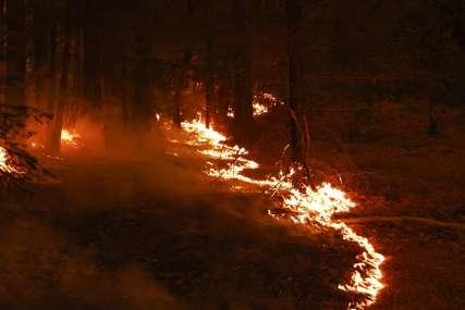 VJETAR OTEŽAVA GAŠENJE Požar u rejonu Ravne planine