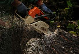 ŽENA STRADALA U ŠUMI Drvo palo na nju dok je sa suprugom spremala ogrijev za zimu