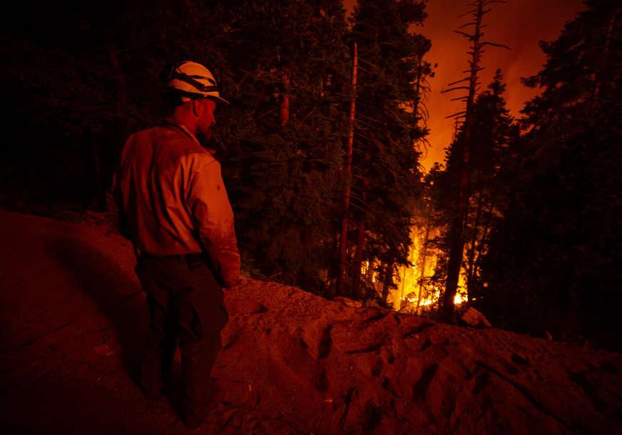 Oko drevnih stabala omotali ćebad otpornu na vatru: Vatrogasci u Kaliforniji pokušavaju da zaštite sekvoje (FOTO)