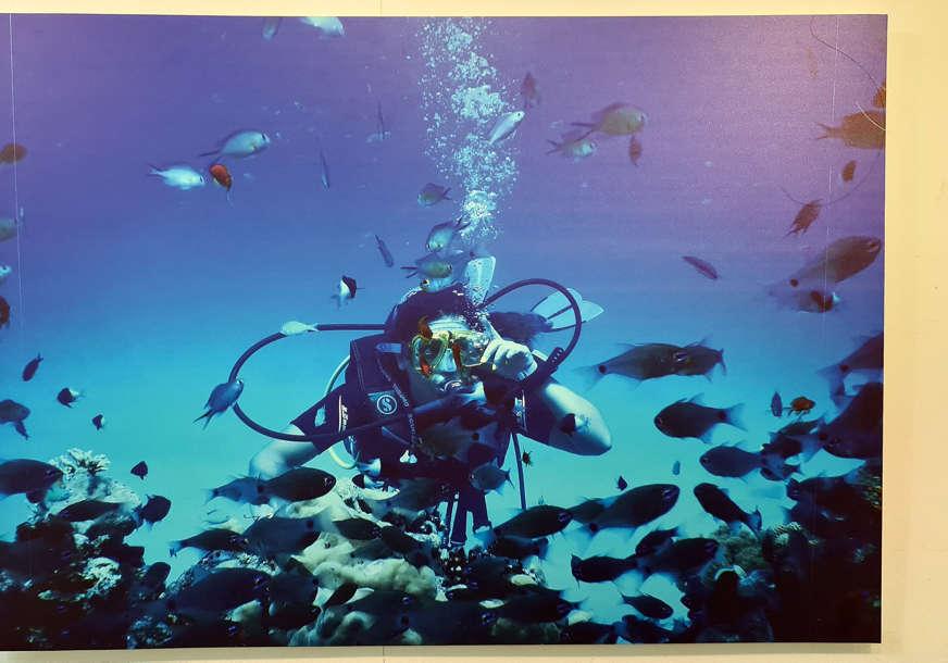 """Fotografije iz dubina Crvenog mora: Otvorena izložba """"Veliko plavetnilo"""" autorke Sandre Mlađanović (FOTO)"""
