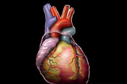 """Svaki desti pacijent pati od hipertenzije """"Kardiovaskularni pacijenti ne mogu da čekaju na svoje  operacije"""""""