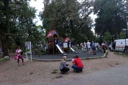 Nesreća u banjalučkom parku: Grana drveta pala na igralište, povrijeđene dvije žene i jedno dijete