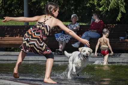 Vodili pse bez povoca i zaštitnih korpi: Sedam građana kažnjeno zbog nepropisnog šetanja ljubimaca