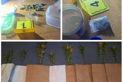 """Akcija kodnog naziva """"Kop"""": U Stanarima zaplijenjena droga"""